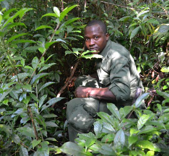 Joko Kamara