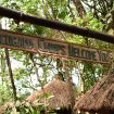 5 Ways to Get to Tacugama