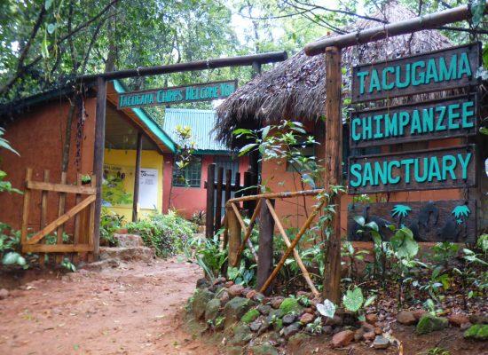 Tacugama Sign